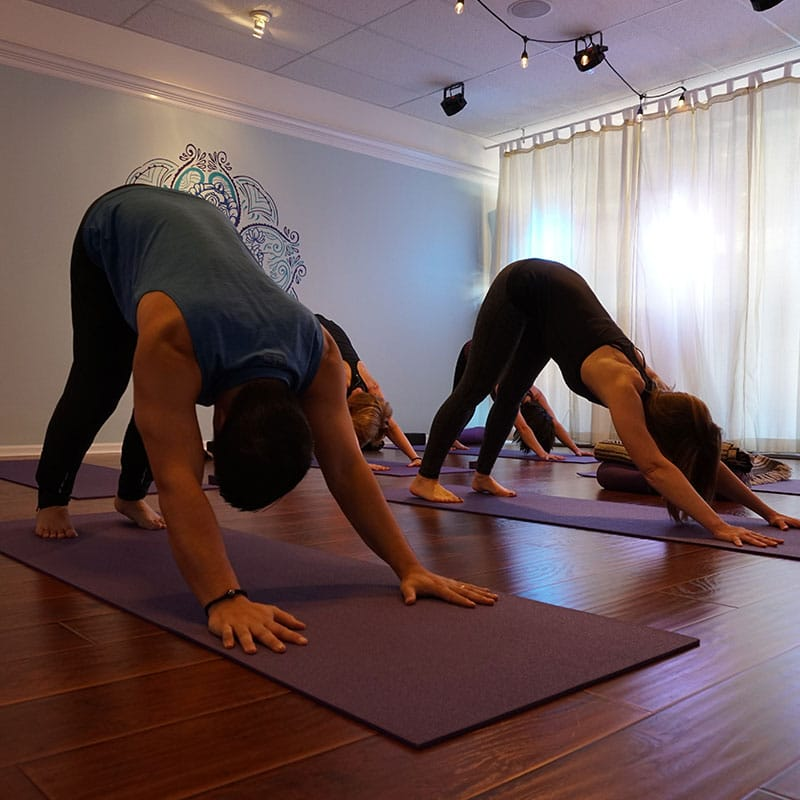 Photo of yoga class on their mats doing down dog pose